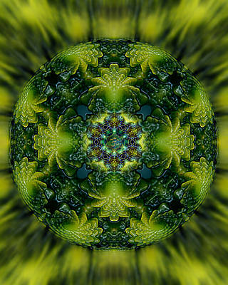 Cauliflower Digital Art - Romanesco Sacred G. Mandala by Richard Copeland