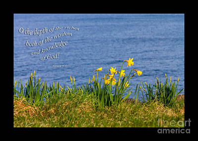 Photograph - Romans 11v33 by Diane Macdonald