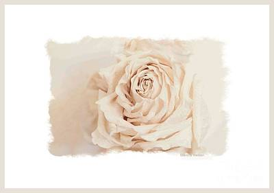 Photograph - Romantic Evening Rose by Marsha Heiken