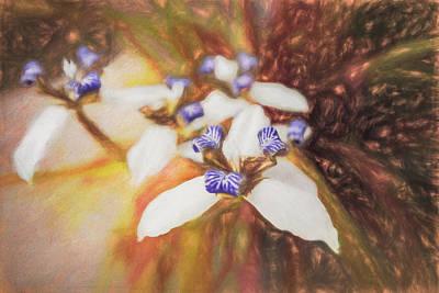Photograph - Romantic Island Lilies Watercolors by Debra and Dave Vanderlaan
