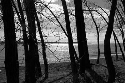 Photograph - Romantic Lake by Valentino Visentini