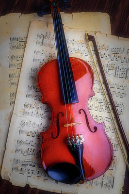 Fiddle Wall Art - Photograph - Romantic Moody Violin by Garry Gay