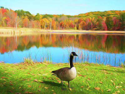 Photograph - Romantic Skies Autumn Pond Goose by Aimee L Maher Photography and Art Visit ALMGallerydotcom