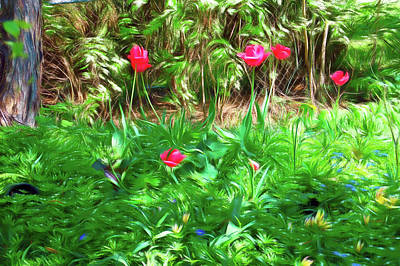 Photograph - Romantic Skies Backyard Tulips by Aimee L Maher Photography and Art Visit ALMGallerydotcom
