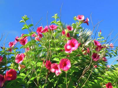 Photograph - Romantic Skies Cherries Jubilee Allamanda by Aimee L Maher Photography and Art Visit ALMGallerydotcom