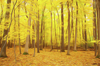 Photograph - Romantic Skies Golden Woods by Aimee L Maher Photography and Art Visit ALMGallerydotcom