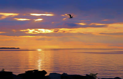 Photograph - Romantic Skies Heavenly Flight by Aimee L Maher Photography and Art Visit ALMGallerydotcom