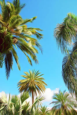 Photograph - Romantic Skies Palms In The Sky by Aimee L Maher Photography and Art Visit ALMGallerydotcom