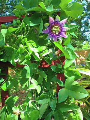Photograph - Romantic Skies Passion Flower 2 by Aimee L Maher Photography and Art Visit ALMGallerydotcom