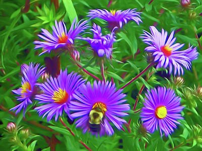 Photograph - Romantic Skies Pollinating by Aimee L Maher Photography and Art Visit ALMGallerydotcom