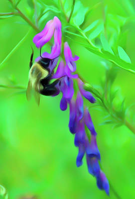 Photograph - Romantic Skies Pollination by Aimee L Maher Photography and Art Visit ALMGallerydotcom
