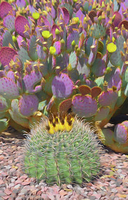 Photograph - Romantic Skies Prickly Pear Blooms by Aimee L Maher Photography and Art Visit ALMGallerydotcom