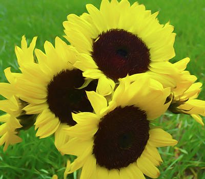 Photograph - Romantic Skies Sunflower Bouquet by Aimee L Maher Photography and Art Visit ALMGallerydotcom