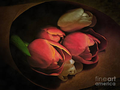 Photograph - Romantic Tulips by Edward Fielding