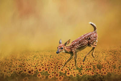 Romping In The Sunflower Field - Fawn Art By Jai Johnson Art Print by Jai Johnson