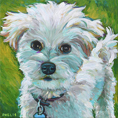 Painting - Ronin, The Maltipoo by Robert Phelps