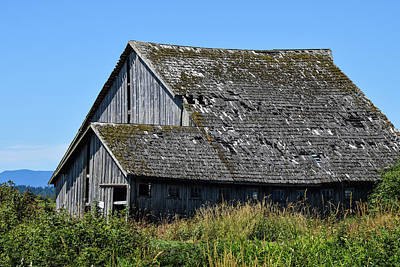 Photograph - Roof Needed by Tom Cochran