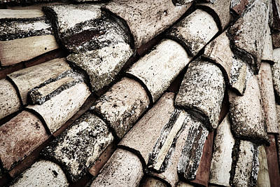 Photograph - Roof Tile Abstract by Stuart Litoff