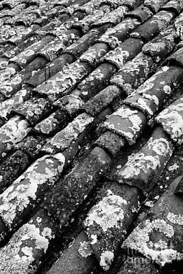 Roof Tiles Art Print by Gaspar Avila