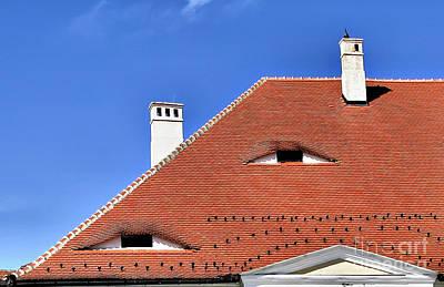 Photograph - Roof's Eyes Of Transylvania by Daliana Pacuraru