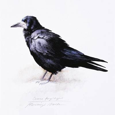 Painting - Rook by Attila Meszlenyi