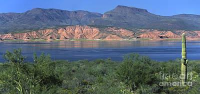 Photograph - Roosevelt Lake - Panoramic by Sandra Bronstein