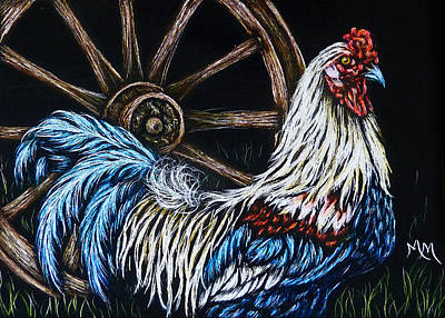 Drawing - Rooster  -  Sa109 by Monique Morin Matson