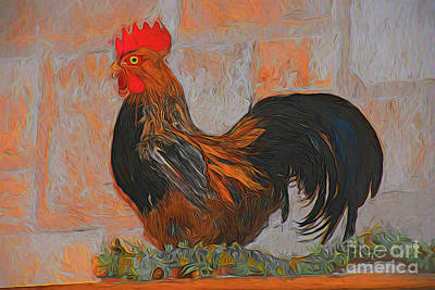 Photograph - Rooster 11718 by Ray Shrewsberry