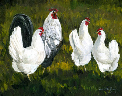 Rooster And Hens Art Print by Charlotte Yealey