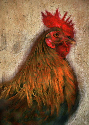 Photograph - Rooster Art by Ron Grafe