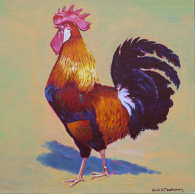 Rooster Brown Leghorn Art Print by Tomas OMaoldomhnaigh