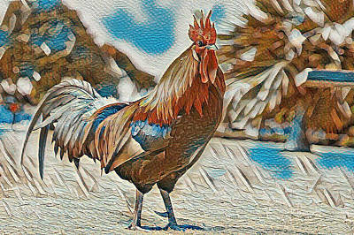 Digital Art - Rooster by Cletis Stump
