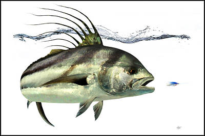 Rooster-fish Art Print