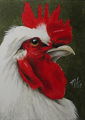 Colored Pencil Painting - Rooster by Melody Lea Lamb