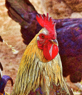 Aloha For Days - Rooster Portrait 3 Abstract I by Linda Brody