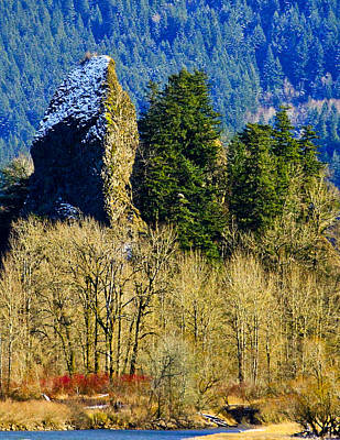 Photograph - Rooster Rock by Albert Seger