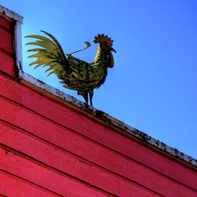 Photograph - Rooster Sculpture by David Patterson