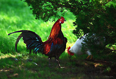 Photograph - Rooster Strut by Anna Louise