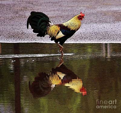 Photograph - Rooster's Reflection by Craig Wood