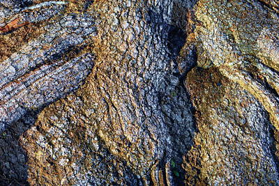 Print featuring the photograph Root Waves by Glenn McCarthy Art and Photography