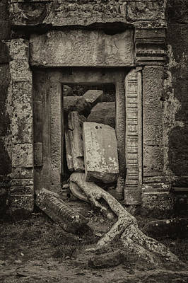 Photograph - Roots In Ruins 2, Ta Prohm, 2014 by Hitendra SINKAR