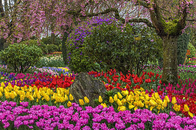 Roozengaarde Flower Garden Art Print by Mark Kiver