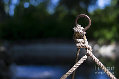 Photograph - Rope Knot by Stefano Piccini
