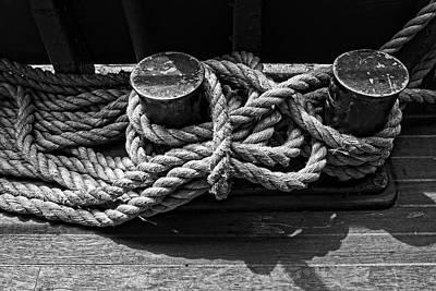 Photograph - Rope Ties - 365-162 by Inge Riis McDonald