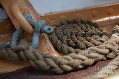 Photograph - Eagle Shackle And Line by Dale Powell