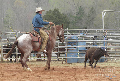 Donna Brown Photograph - Roping  by Donna Brown