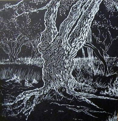 Drawing - Ro's Gum Tree by Barbara O'Toole
