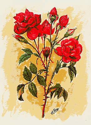 Fauna Painting - Rosa Mister Lincoln by Andrew Read