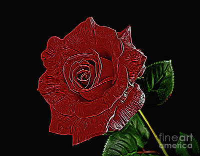 Photograph - Rose 121917-1 by Ray Shrewsberry