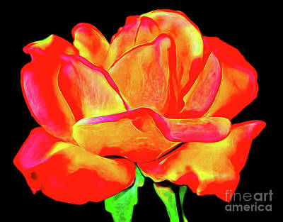 Photograph - Rose 122 by Ray Shrewsberry